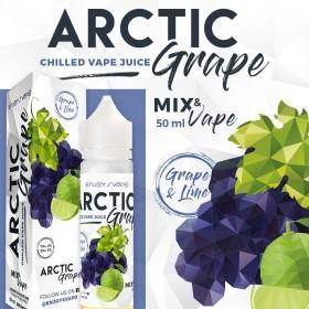 ARCTIC GRAPE 50 ML ENJOY SVAPO