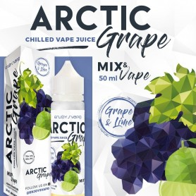 ARCTIC GRAPE 50 ML ENJOY SVAPO