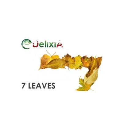 7 LEAVES AROMA 10 ML DELIXIA SCAD 05/20