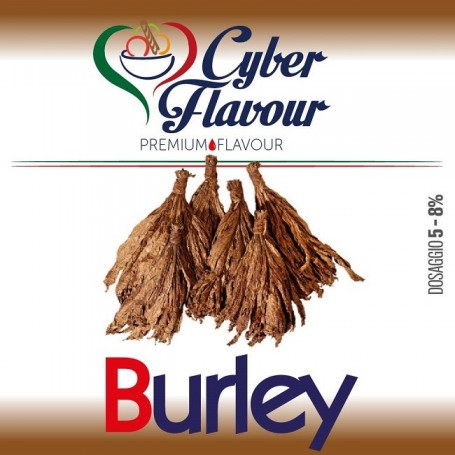 BURLEY AROMA 10 ML CYBER FLAVOUR