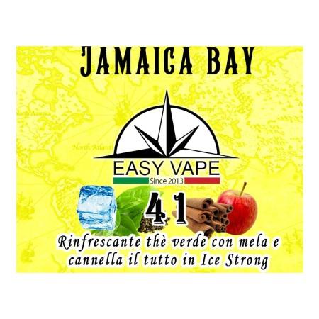 JAMAICA BAY 41  AROMA 10 ML EASY VAPE